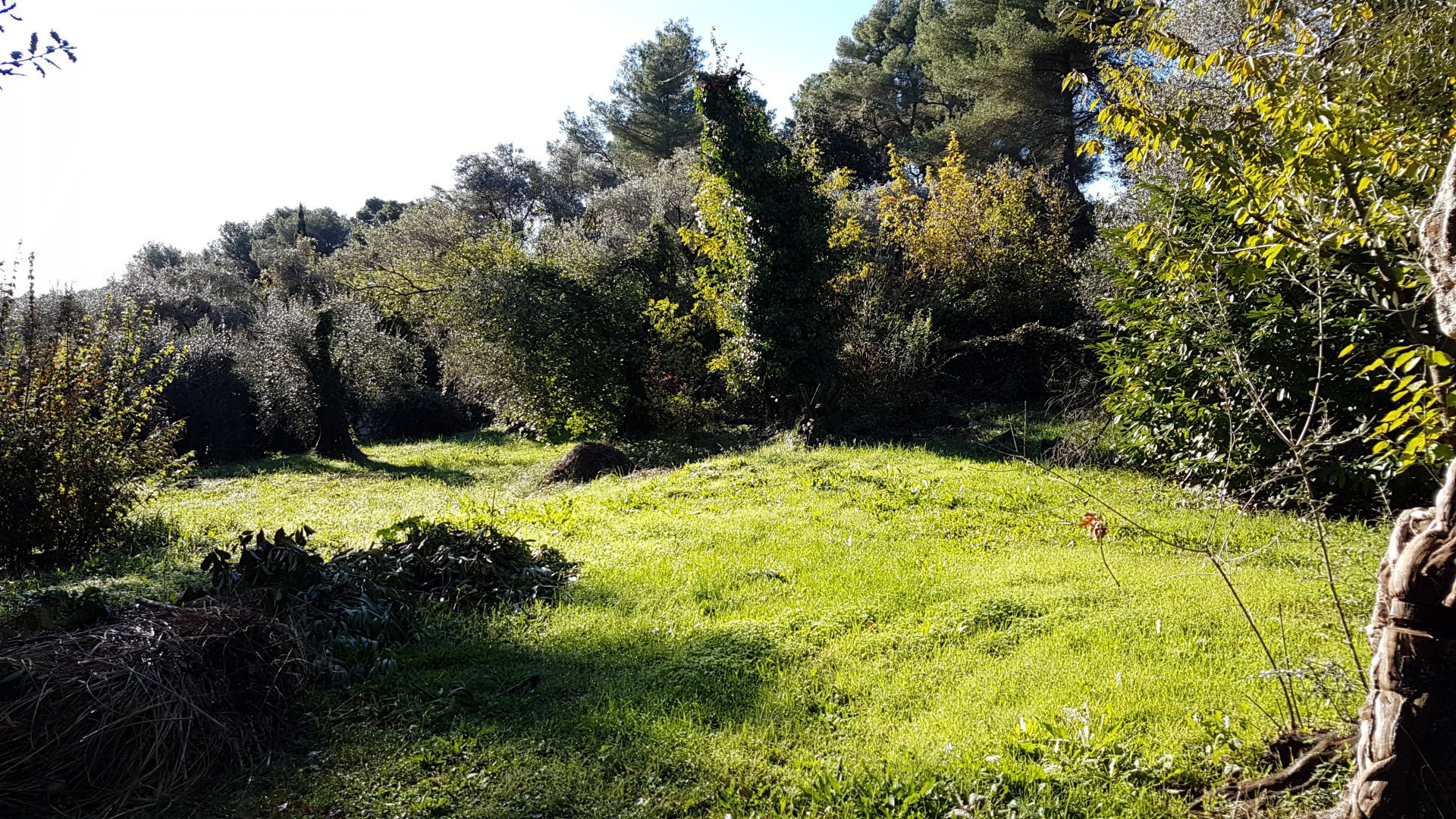 Sale Building land - Saint-Paul-de-Vence