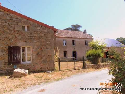 For sale, Allier detached house, barn, friends house and garden (900m²)