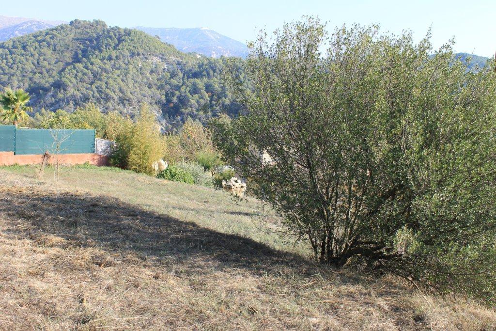 LA POINTE DE CONTES : A 15 minutes de Nice, terrain ...