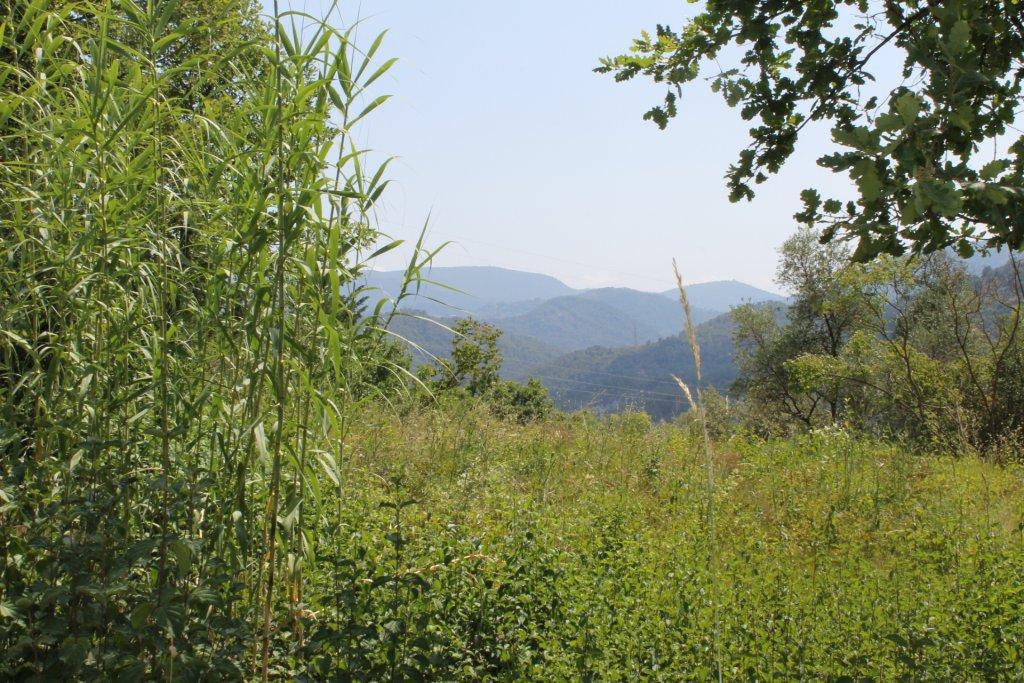 lieu-dit Blausasc à l'ESCARENE/ Frontière BLAUSASC ...