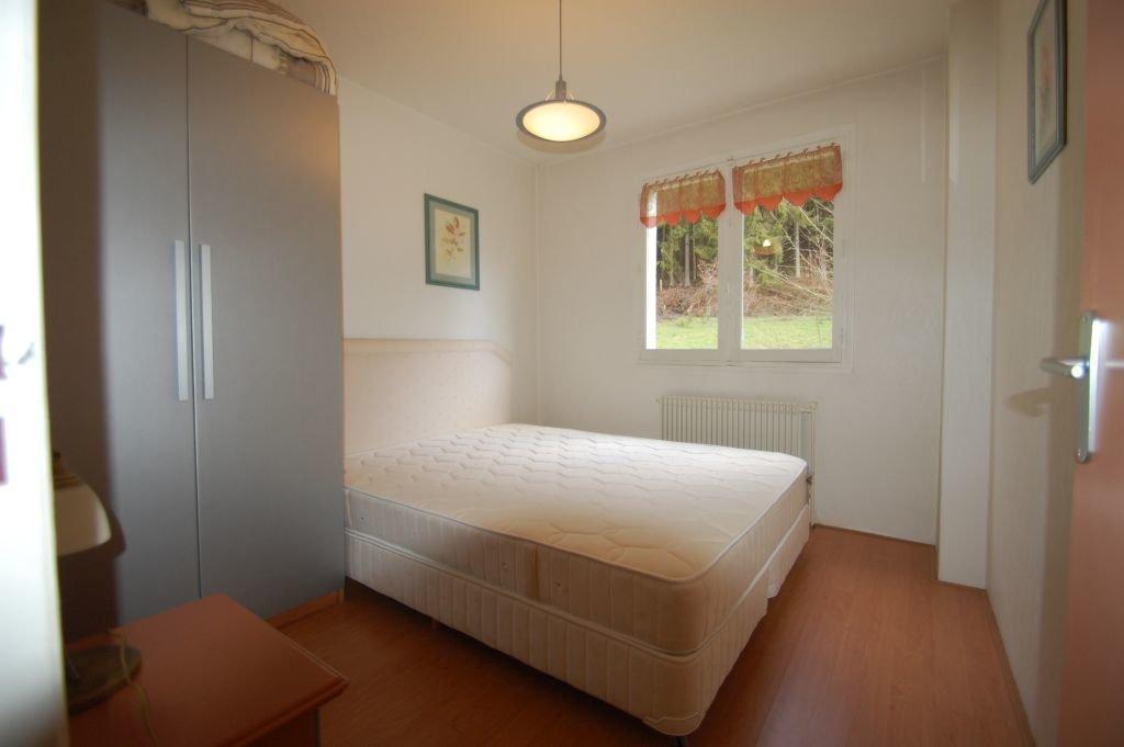 VOSGES - Bordure forêt, maison typique sur 672 m2