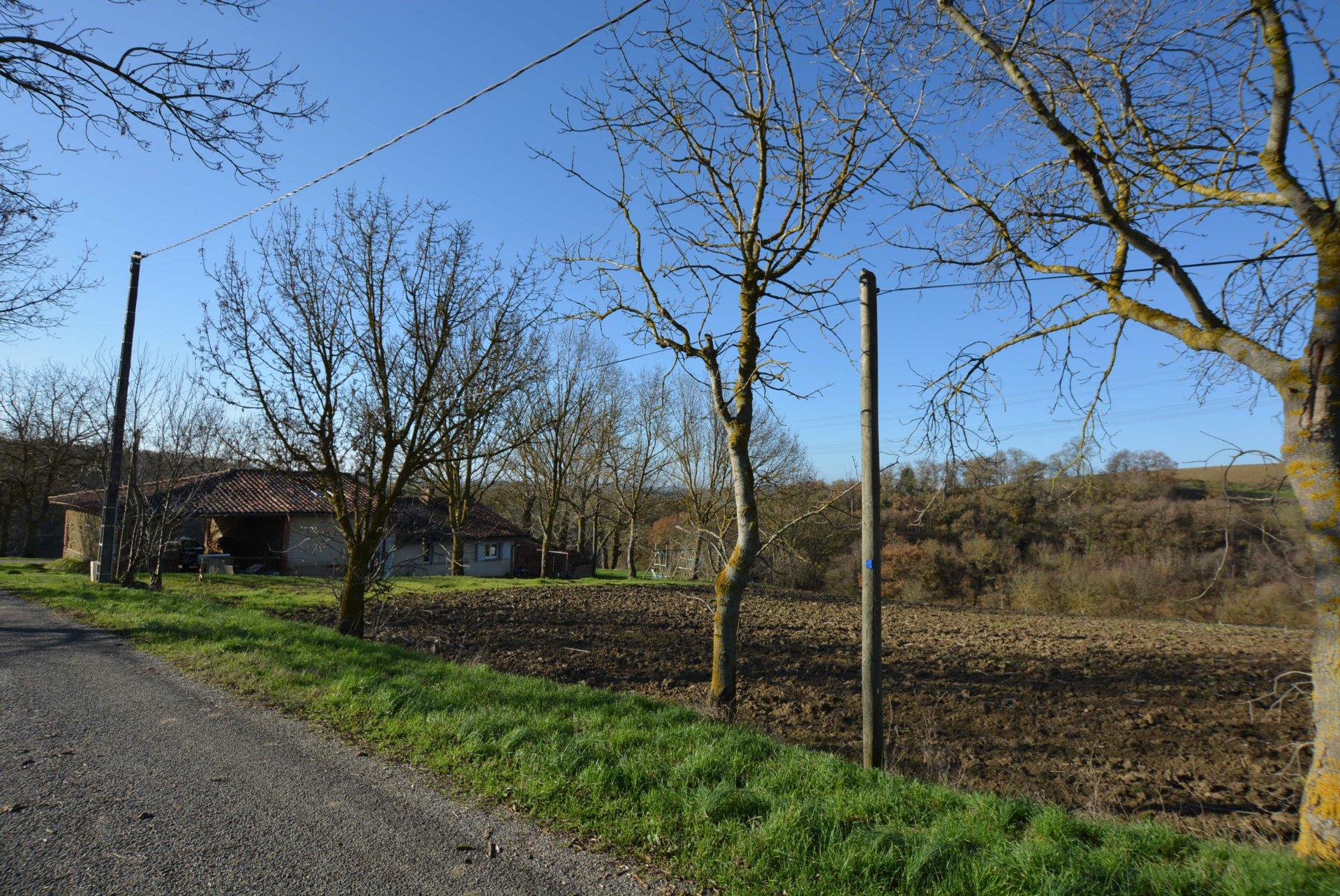 Rental Farm - Lanta