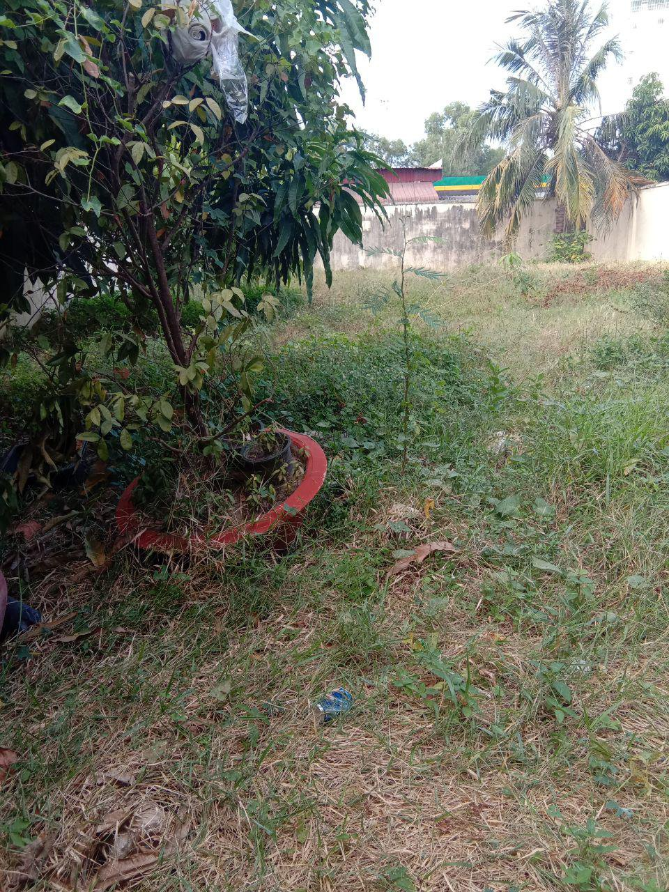 Sale Residential land Chamkarmon