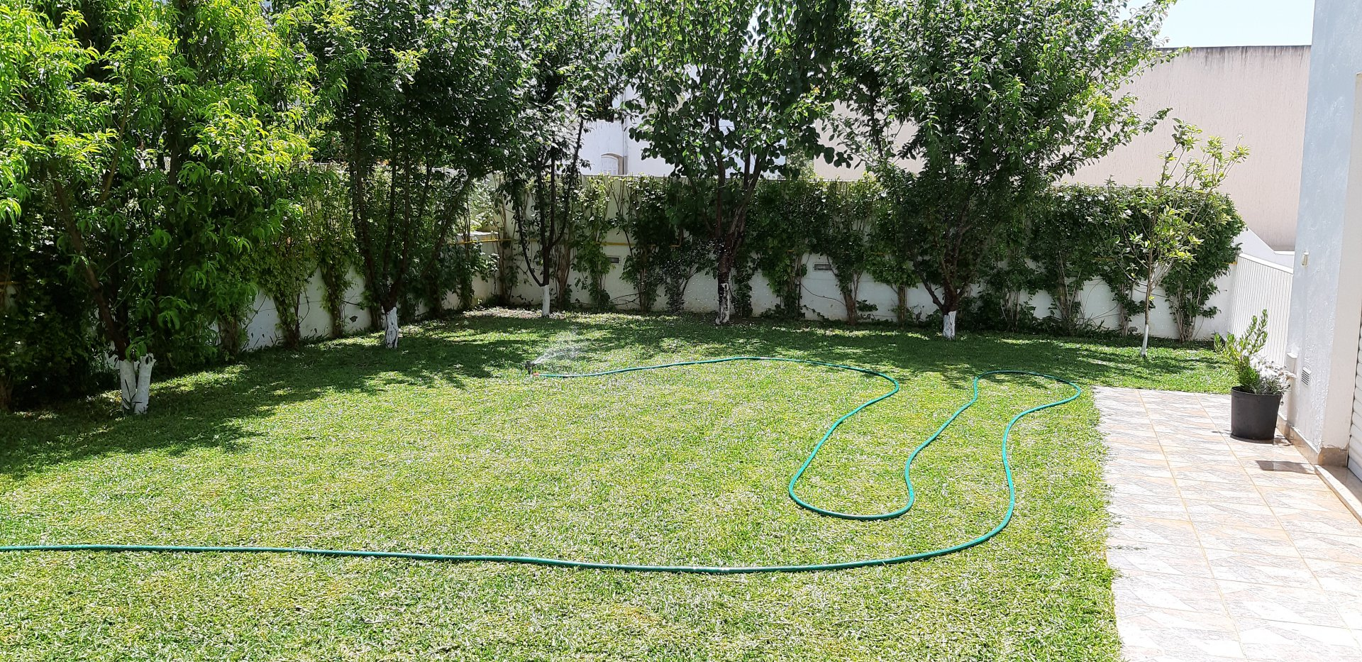 Rental Villa - Jardins de Carthage - Tunisia