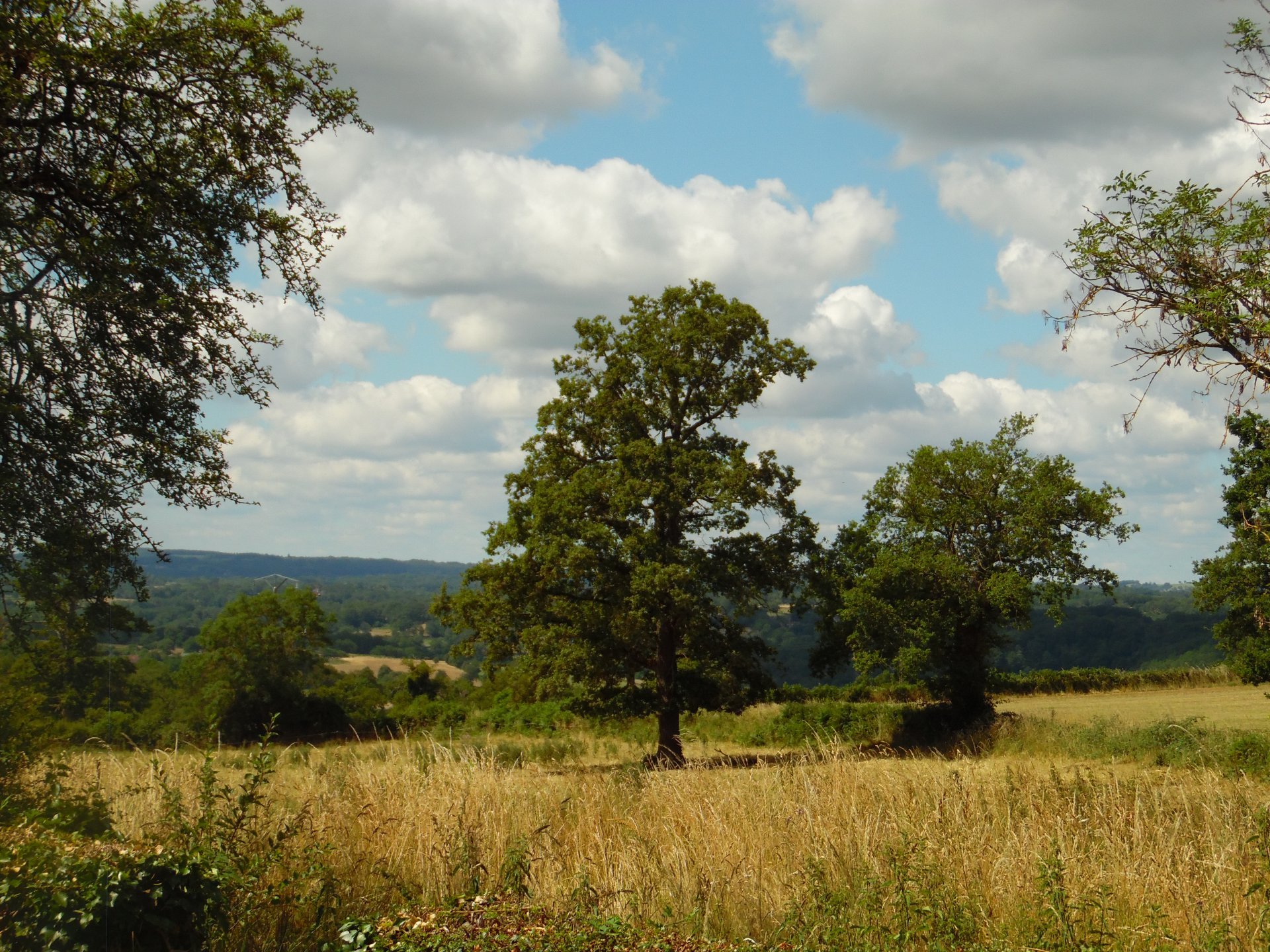 Nice house, garden and stunning view for sale in the Creuse