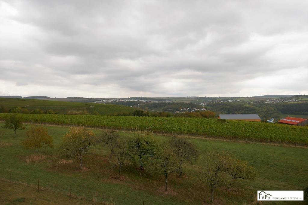 Location Commerce - Wasserbillig - Luxembourg