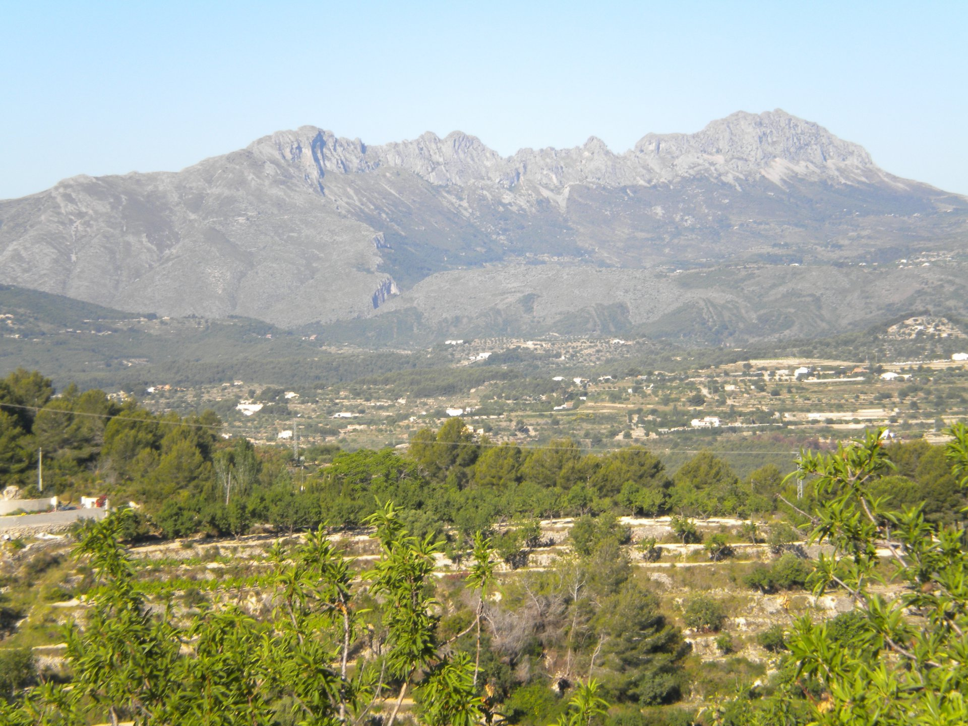 Plot in Llenes, Benissa
