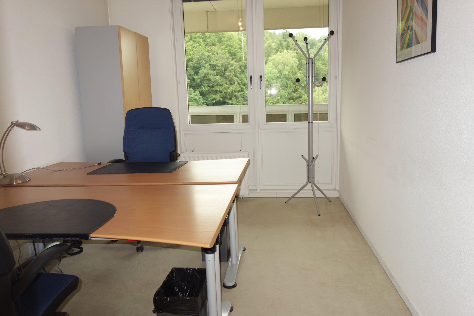 Vermietung Büro - Luxembourg Dommeldange - Luxemburg
