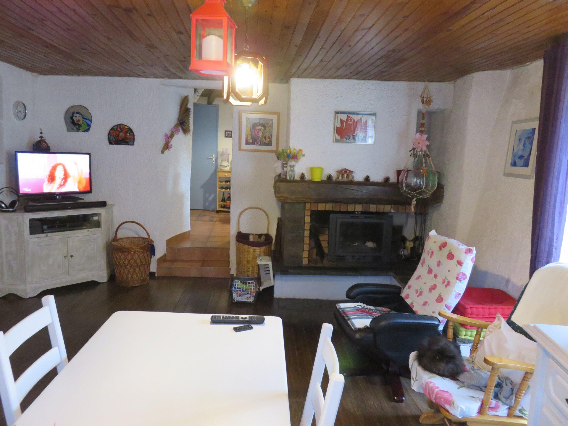 Sale Village house - Serdinya
