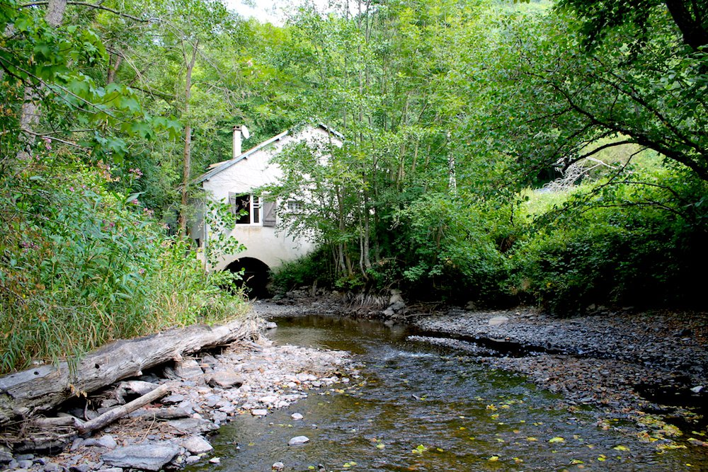 For sale, Auvergne, old watermill with 4500m² of land.