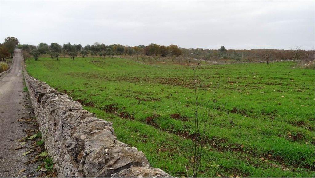 Verkauf Grundstück - Ceglie Messapica - Italien