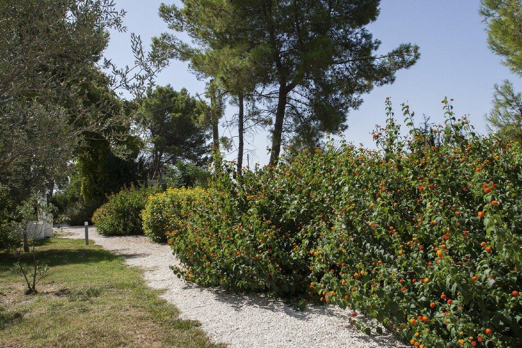 Sale Farm - Oria - Italy