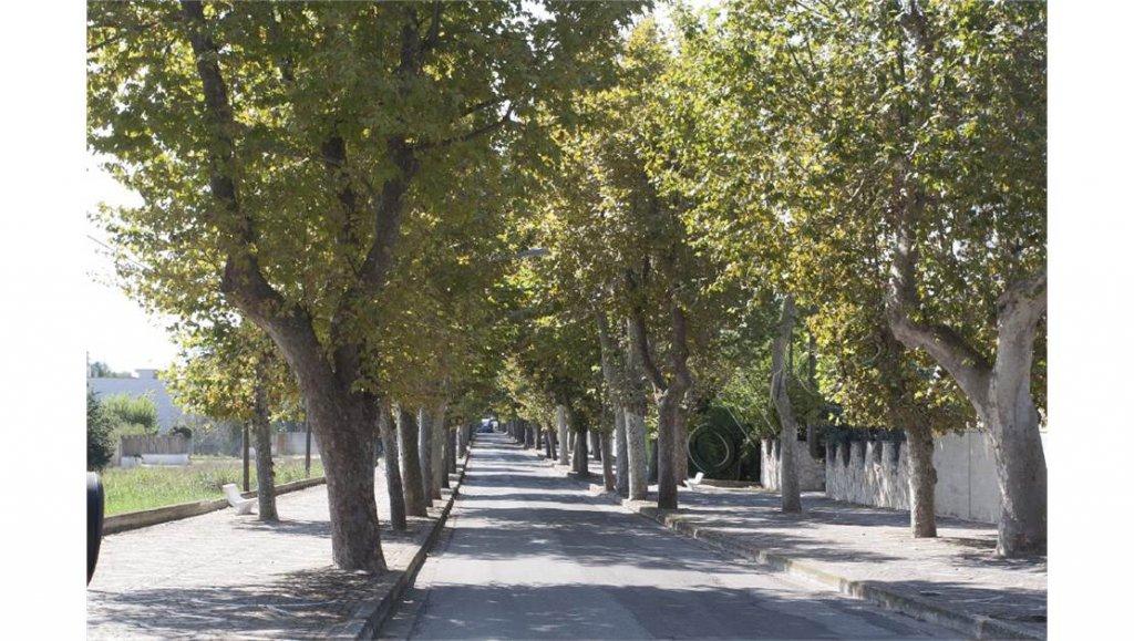 Vendita Casa - Oria - Italia