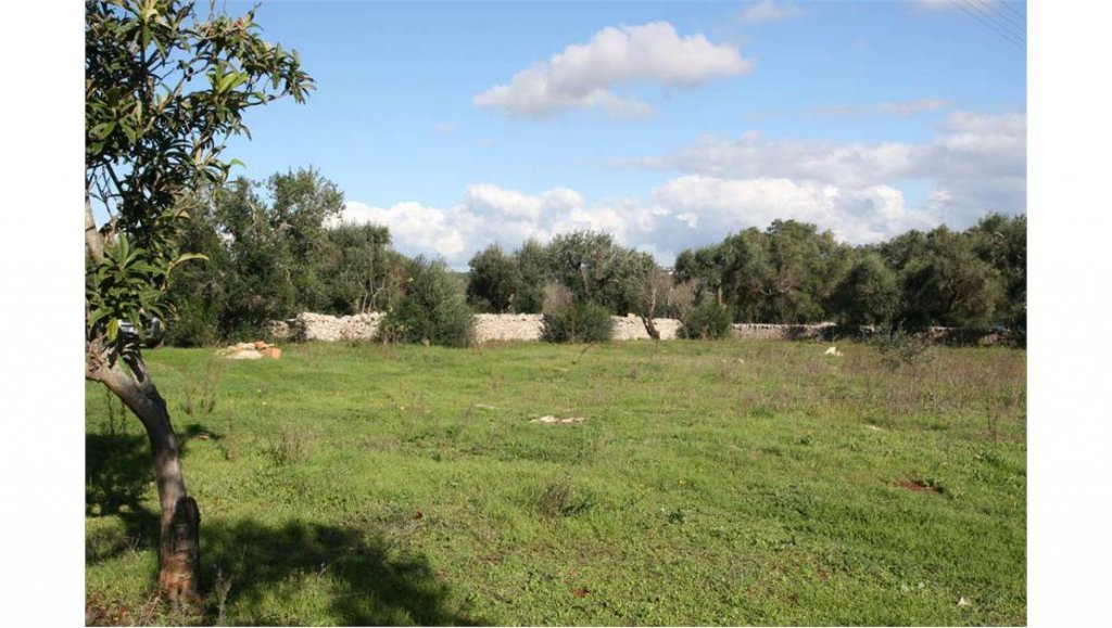 Sale Plot of land - Ostuni - Italy