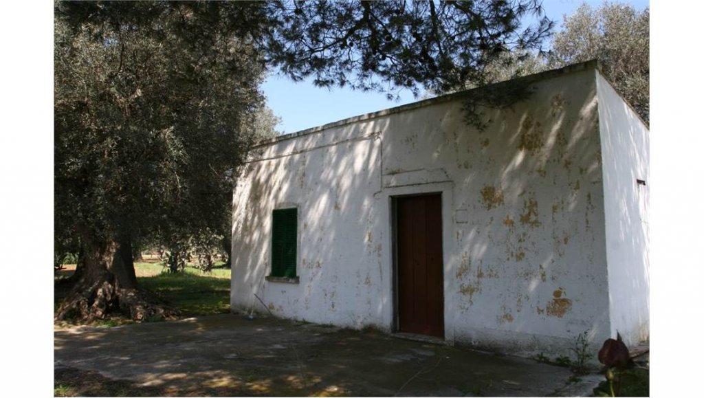 Vente Chaumière - Oria - Italie