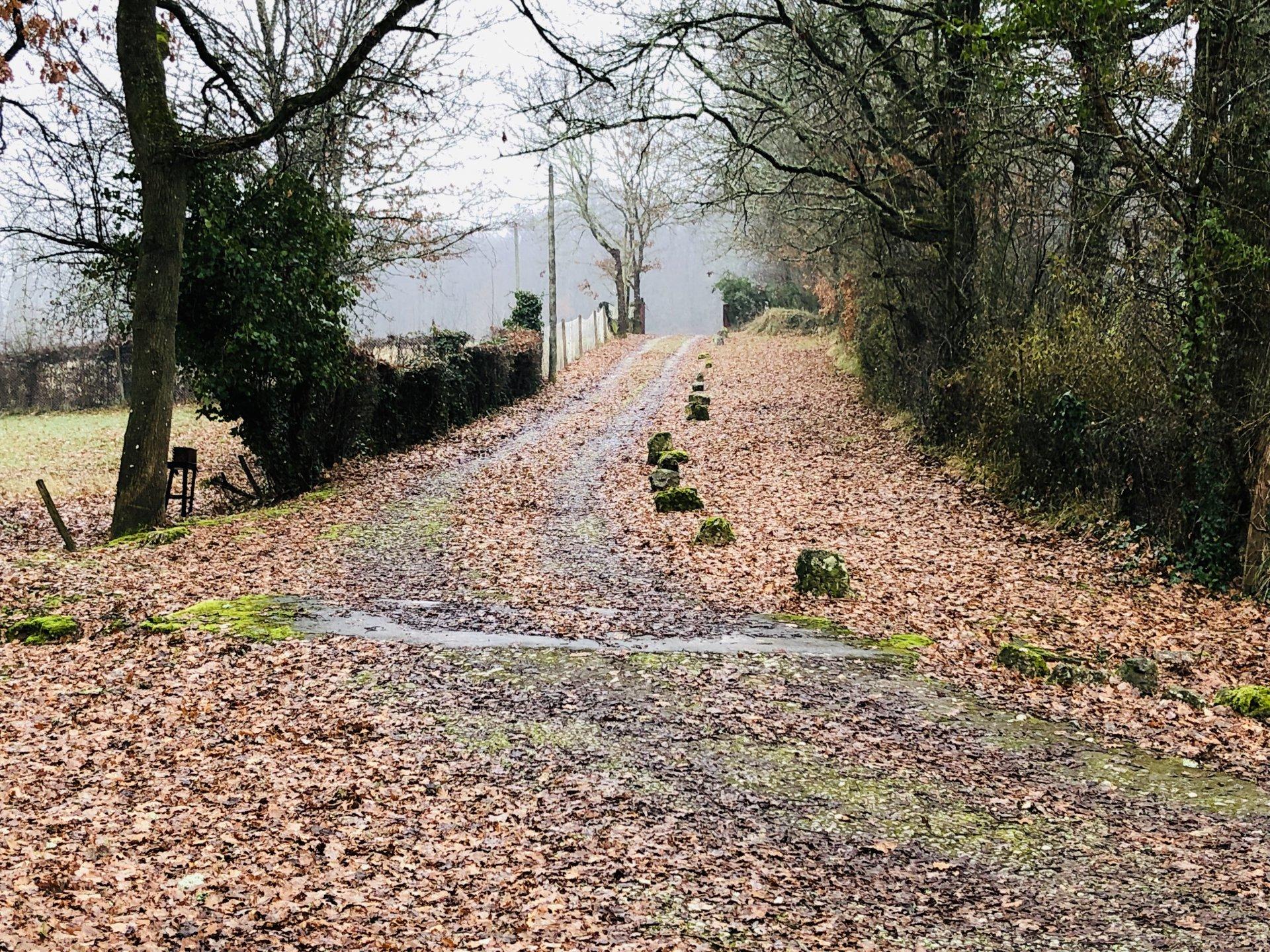 10 KMS DE BERGERAC PROPRIÉTÉ SUR  1 HECTARE