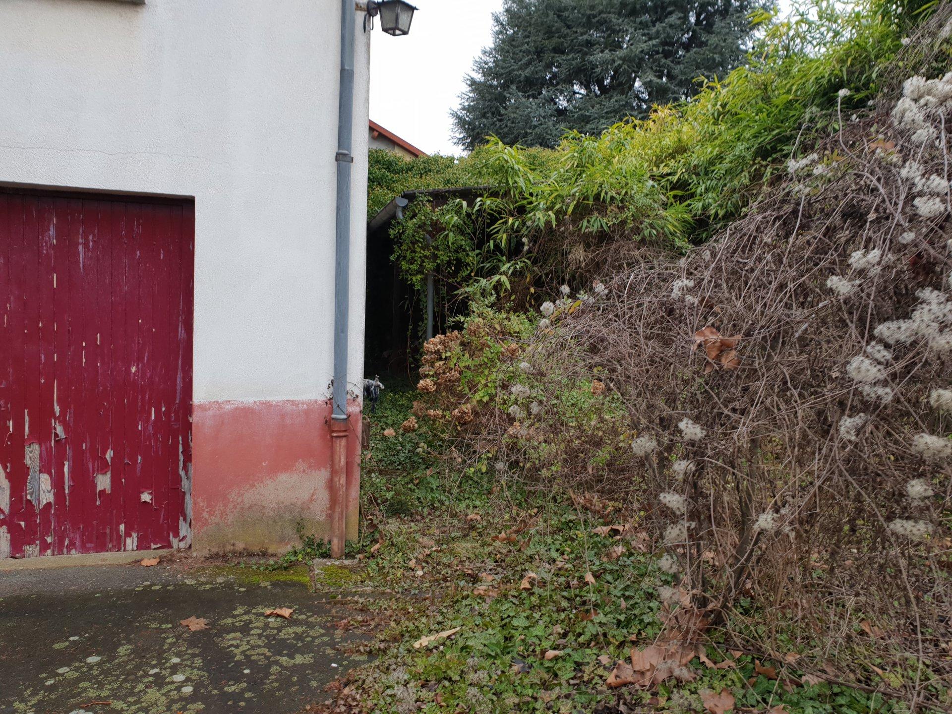 Maison à rénover dans un écrin de verdure