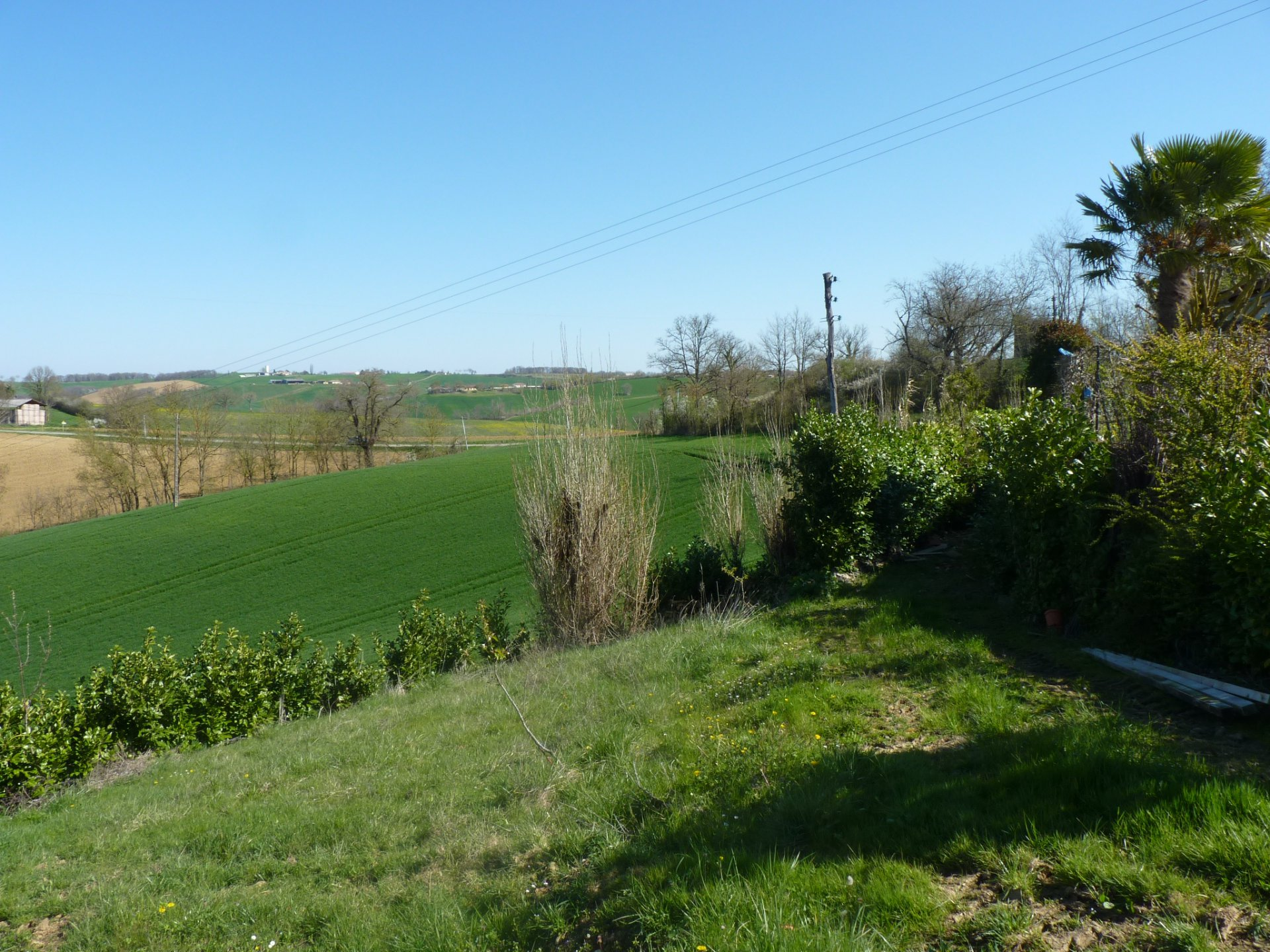 Secteur proche du Fousseret, maison familiale sur plus de 5 hectares