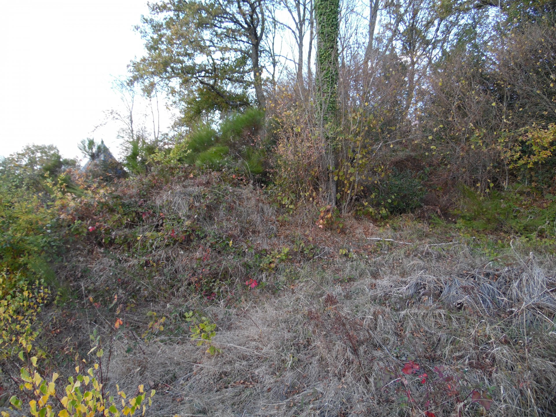 Te koop in de Creuse, natuurstenen huis met schuur en grond.