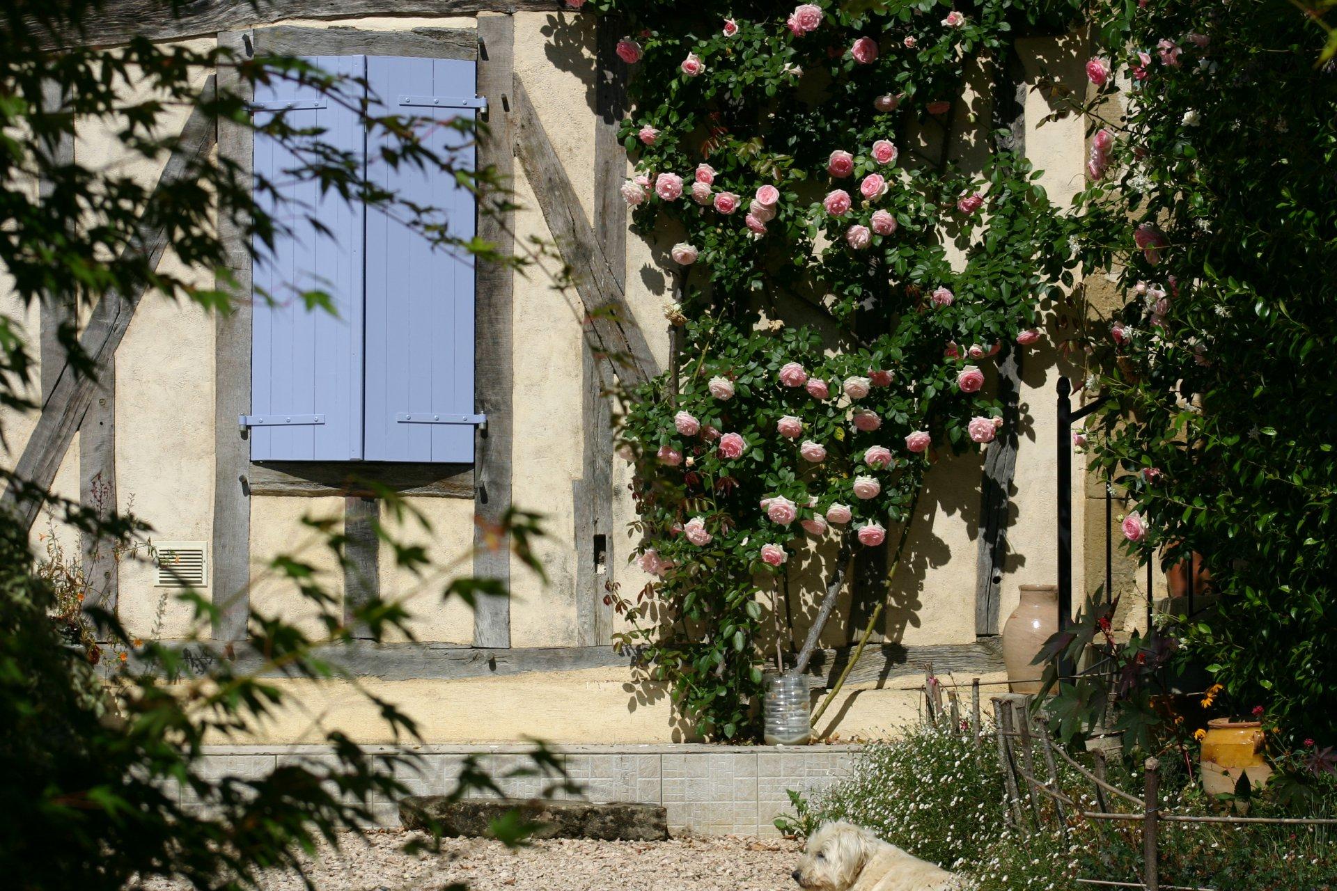 Magnifiquement situé, ferme avec gîtes, sur 6ha avec lac ! Gers, Midi-Pyrénées
