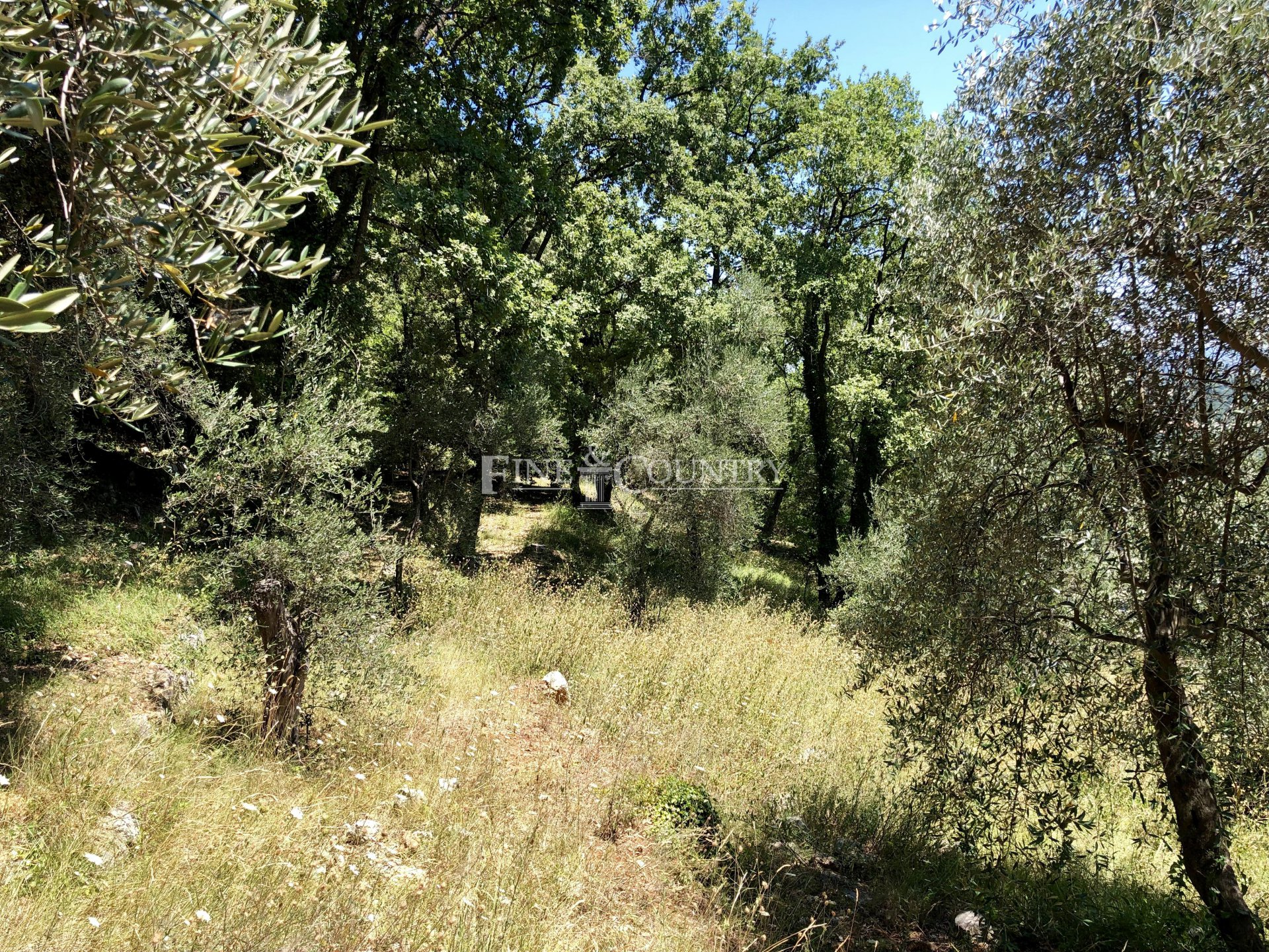 Land for sale in Le Tignet