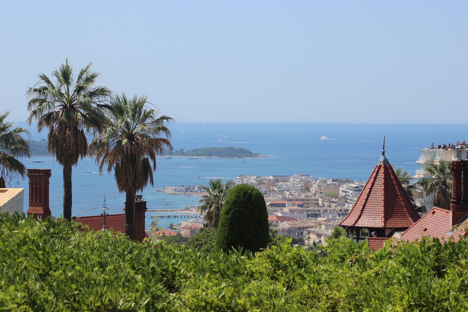 Havsutsikt och swimmingpool Cannes Californie