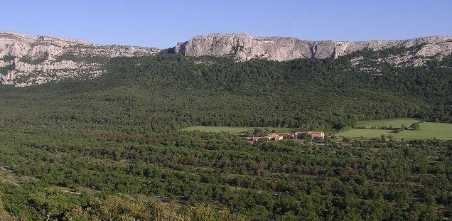 Terrain plus d'1 hect dont 6500 m² agricole