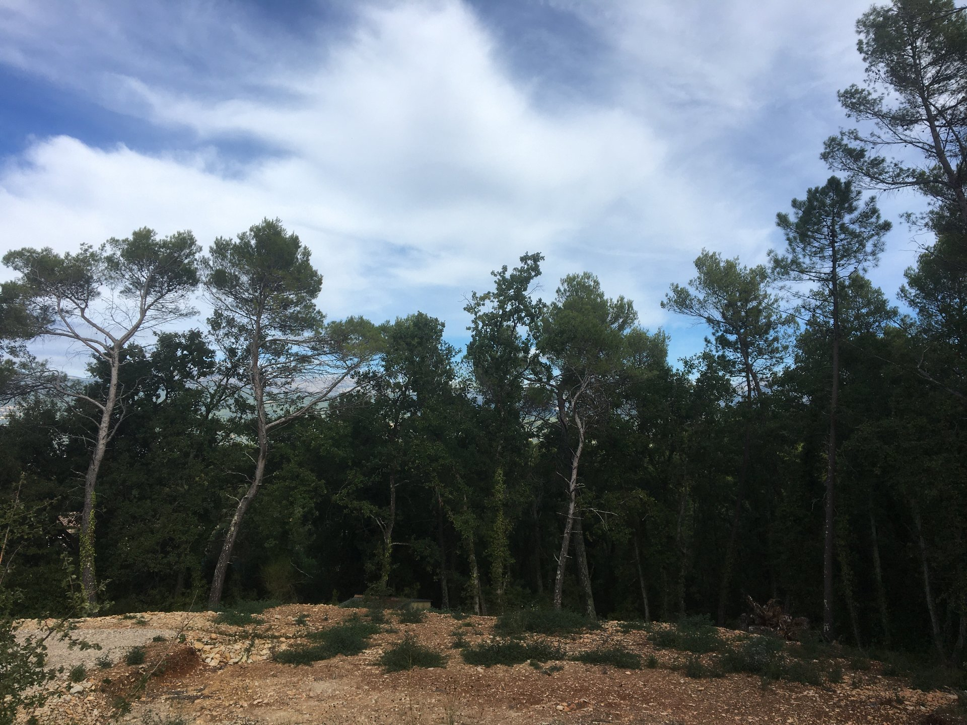 Plot of land in Fayence with view