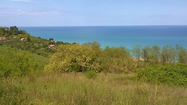 Sale Plot of land - Silvi - Italy