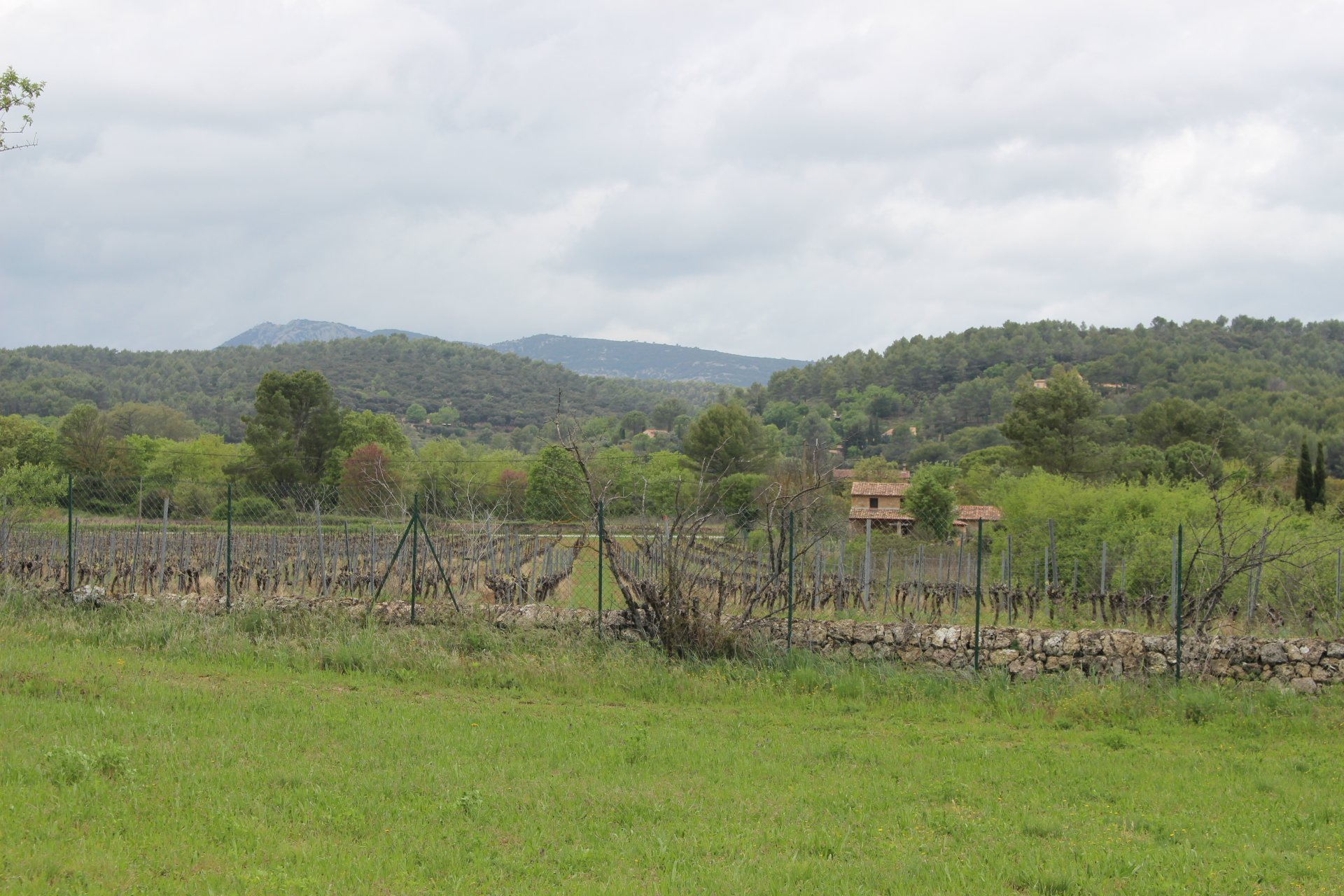 Property near Cotignac, swimmingpool and tennis 3 garages on 9449m of land.