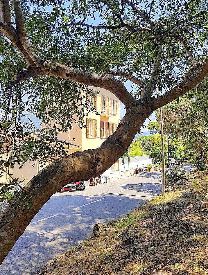 Nice Mont Boron 2p refait neuf immeuble