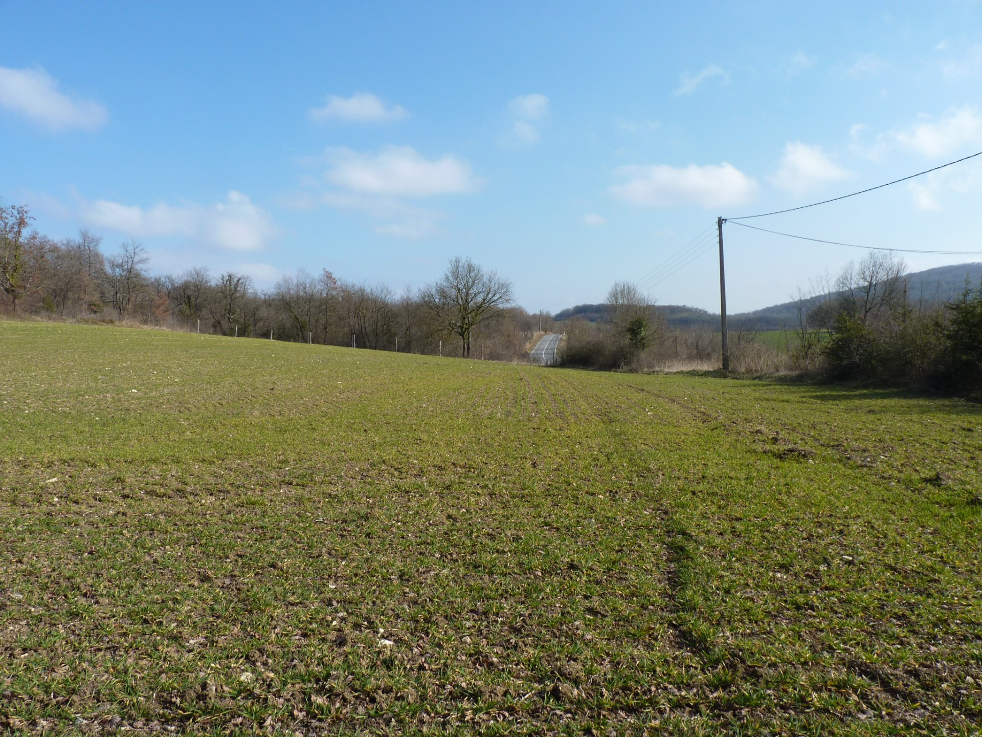 Sector FRECHET, building plot of 7480 m² view Pyrenees