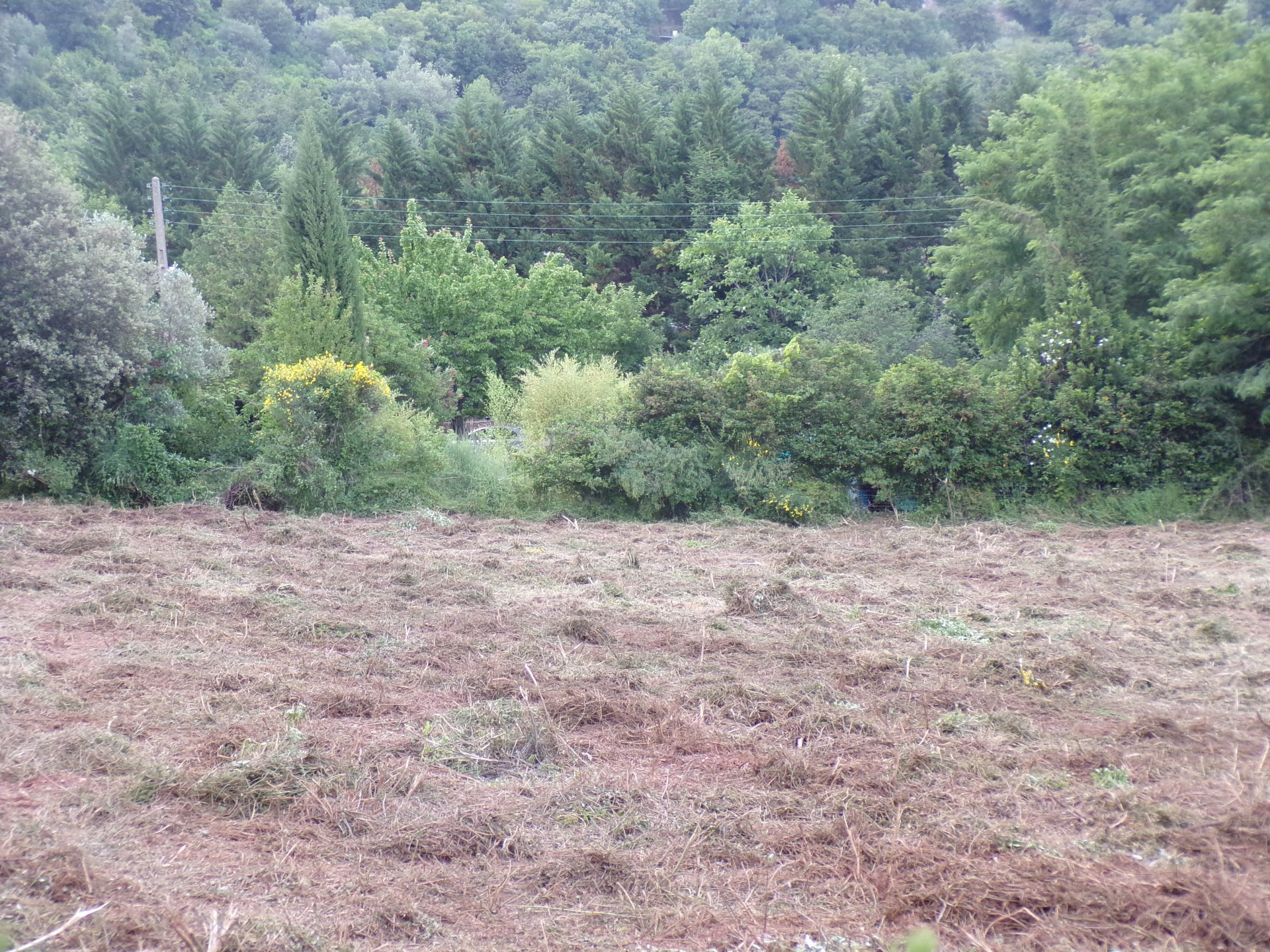 Sale Building land - Lodève