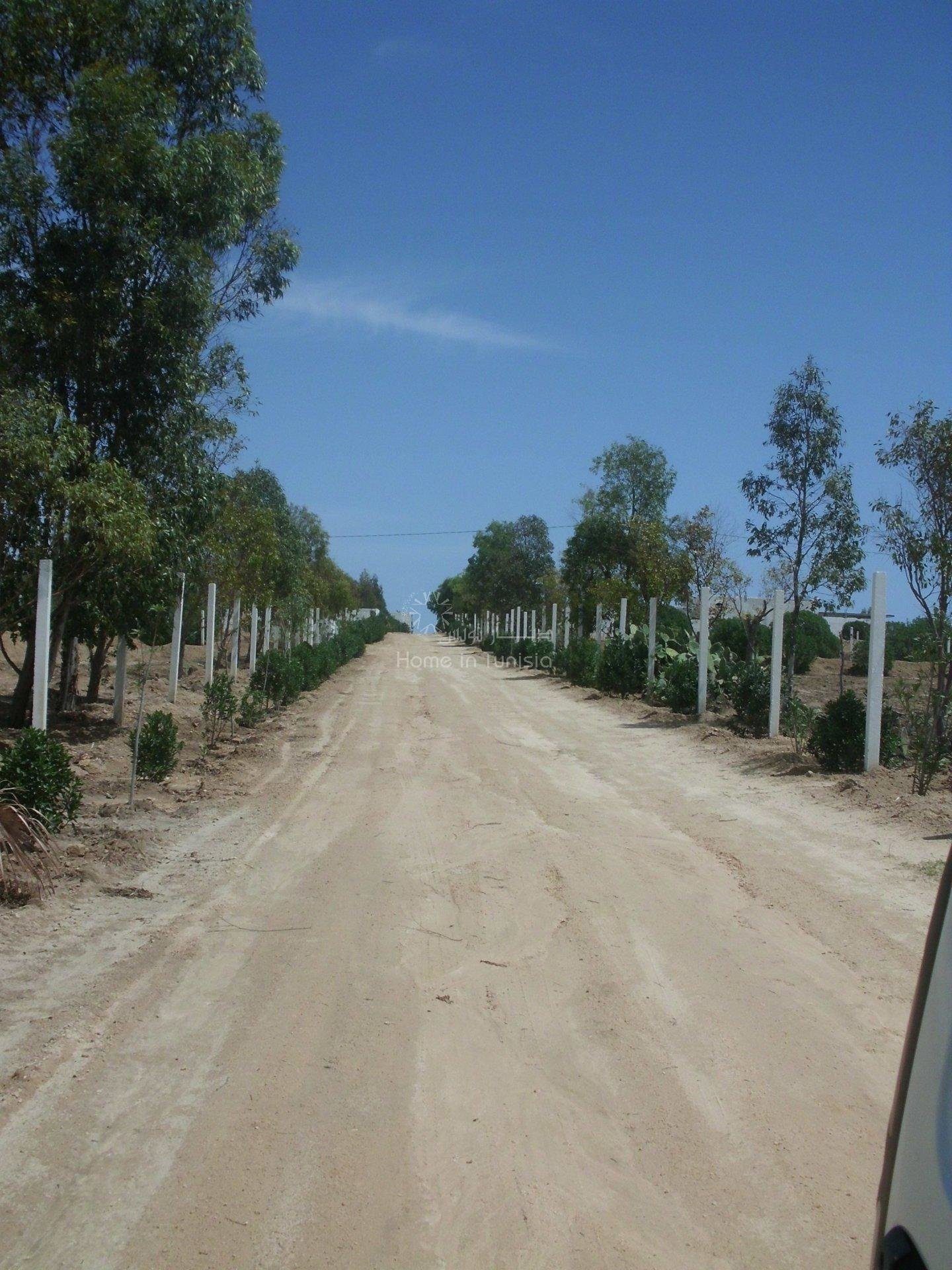 terrain agricole loti