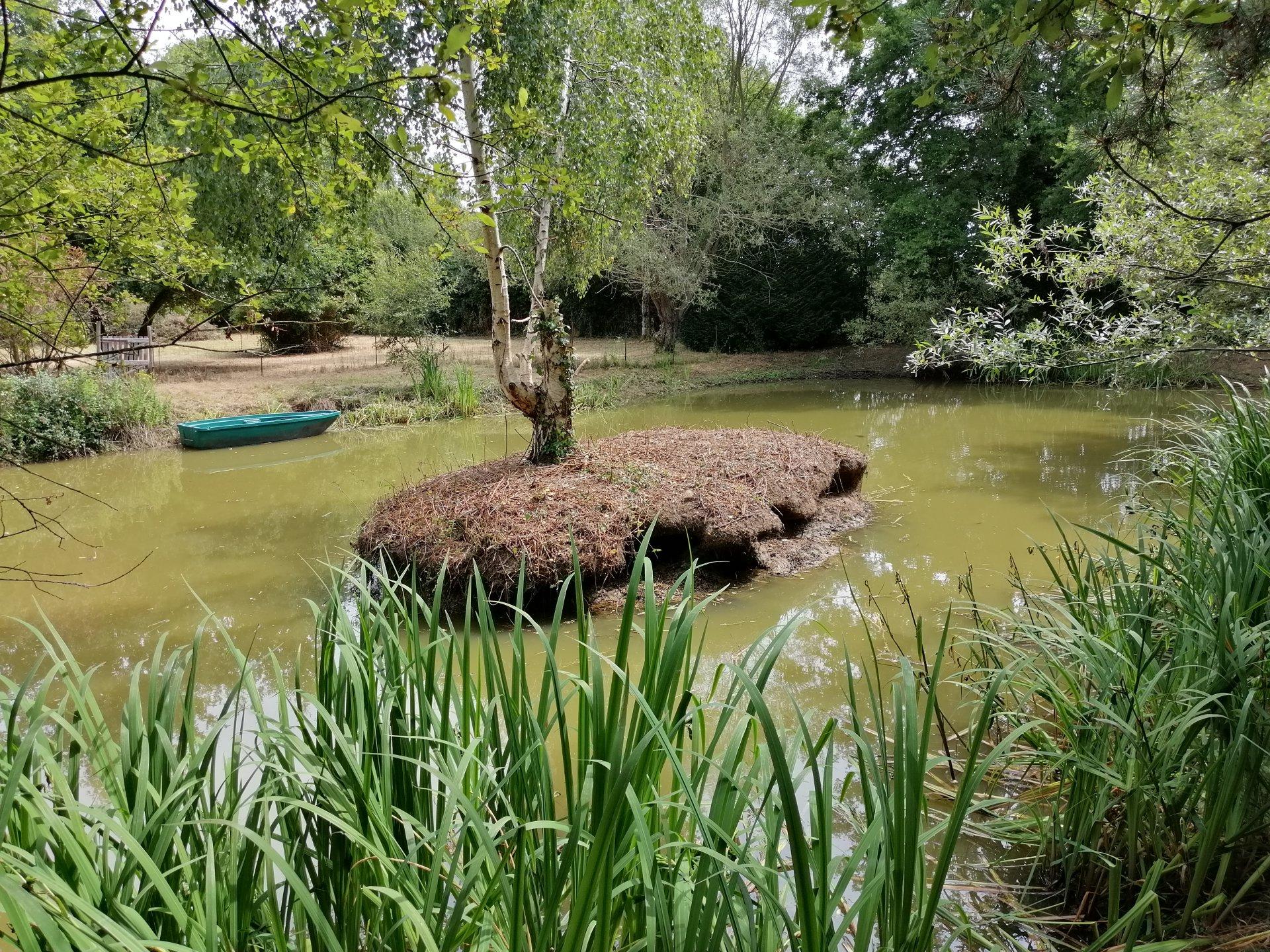 Très beau terrain de loisirs au calme avec étang