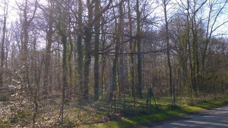 Vente Terrain constructible - Montfort-l'Amaury