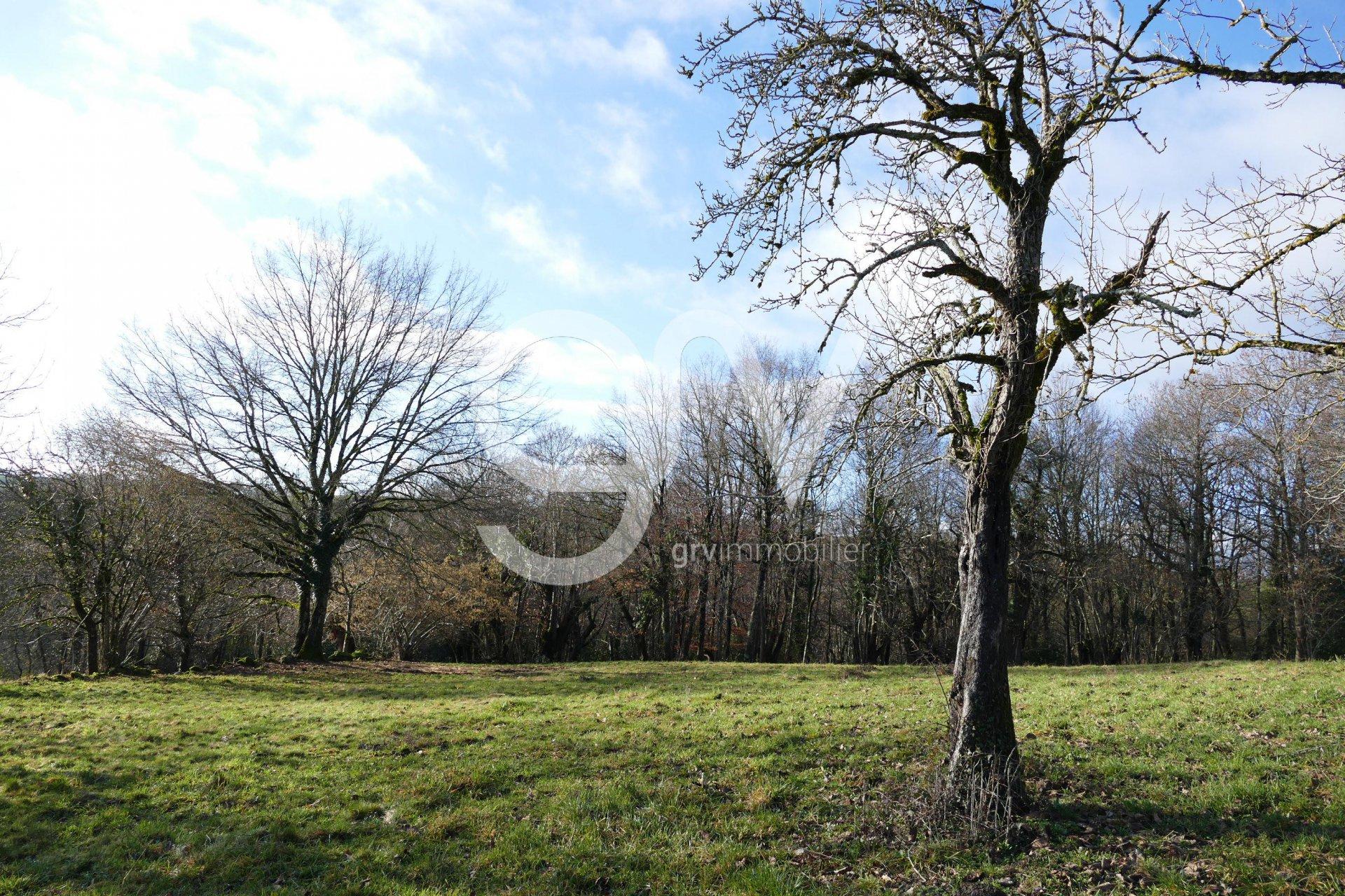 Sale Property - Mourjou