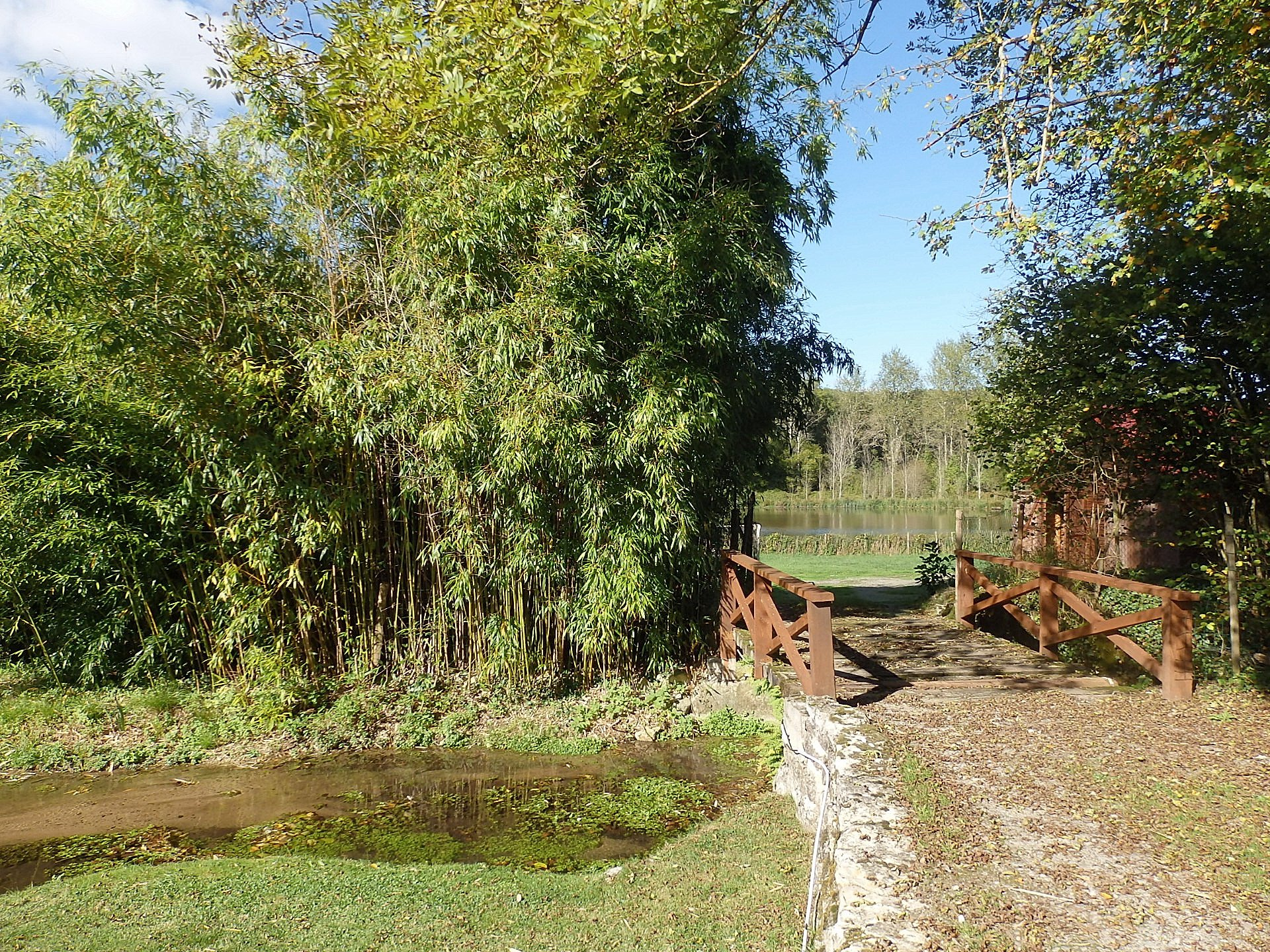 House with lake and stream for sale in the Brenne 36
