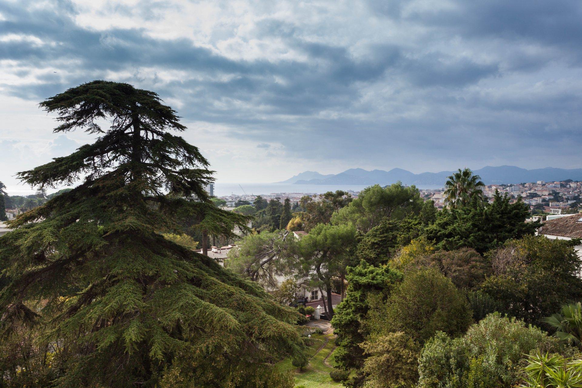 Bel appartement vue mer beau quartier de Cannes