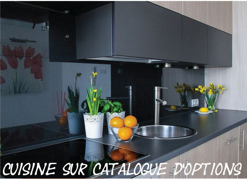 Appartement T2  Standing Aiguelongue avec terrasse 10m2