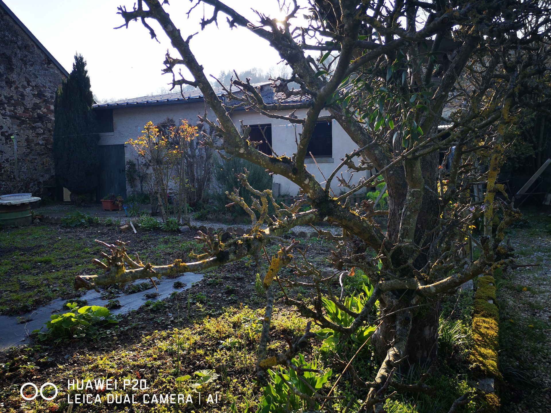 """Maison de Bourg """"Alpes Mancelles"""" St Léonard des bois"""