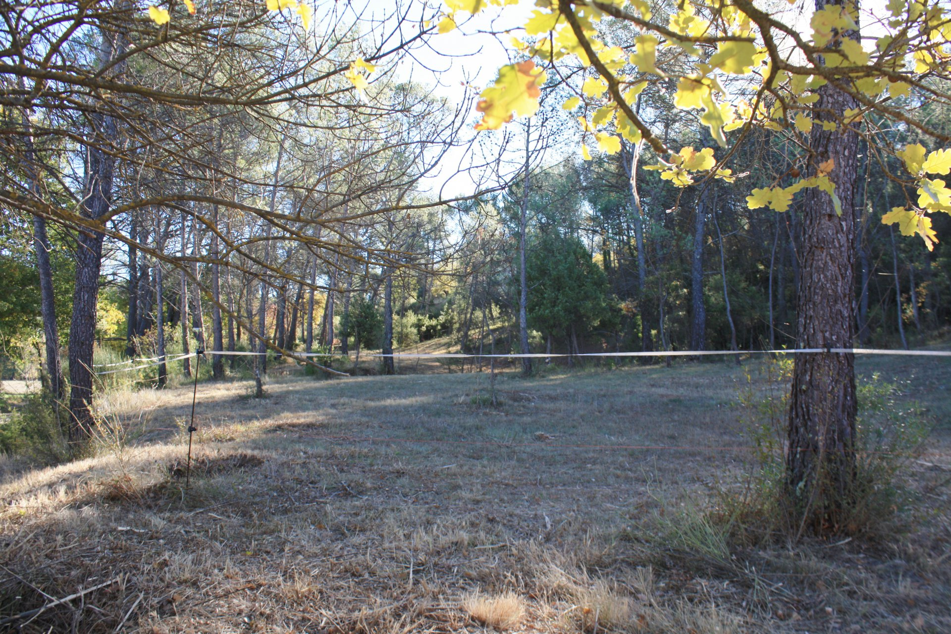 Sale Building land - Salernes