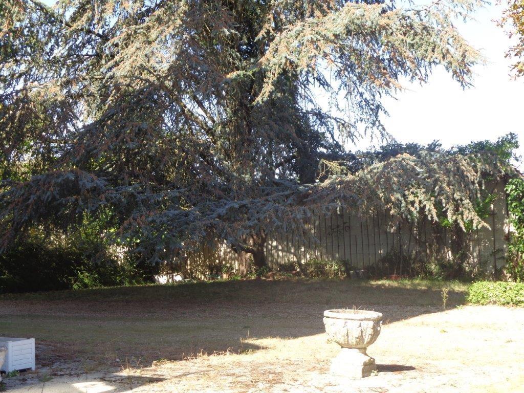 Ain Dombes Maison de maitre dans parc