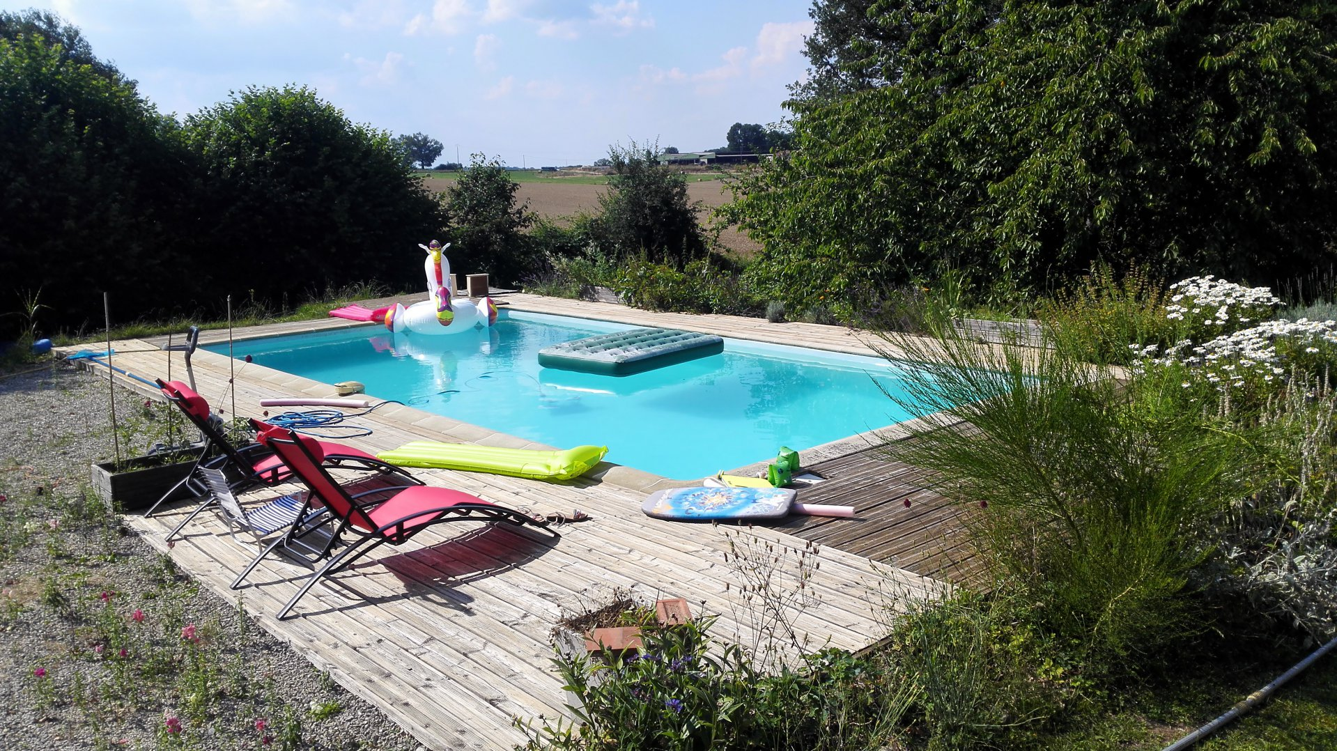 Lovely old charentaise house with pool