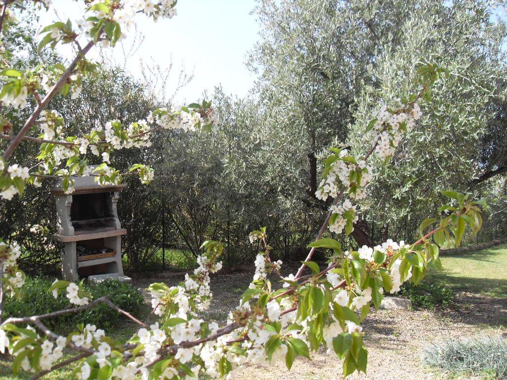 Rental Villa - Calenzana