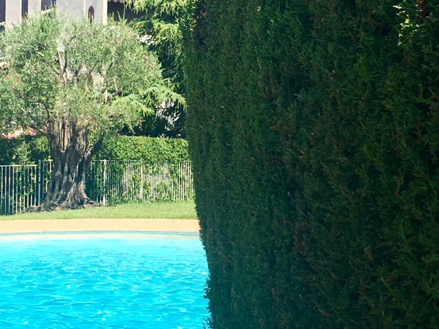 STUDIO  Terrasse parc piscine