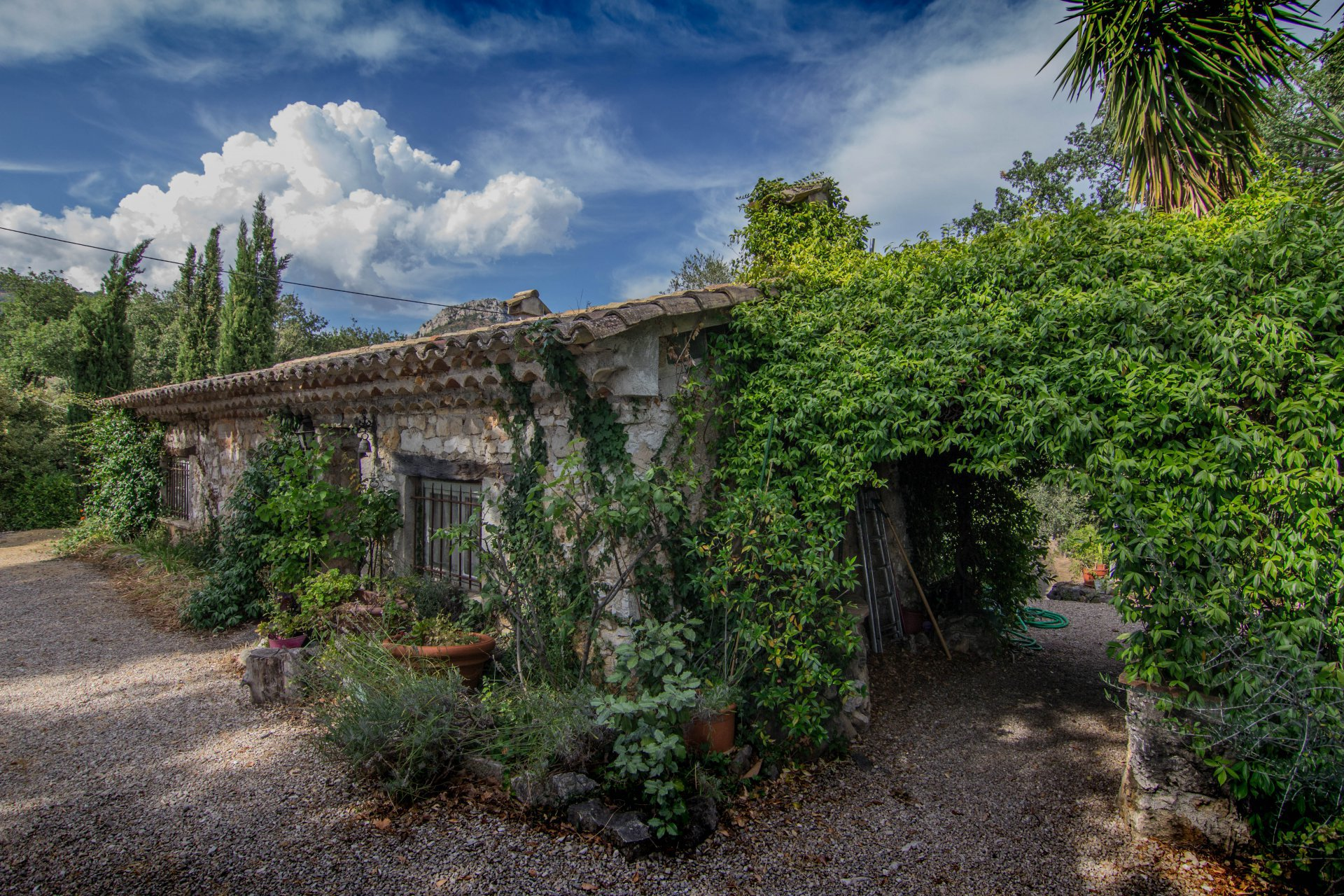 3 ha ESTATE IN VENCE