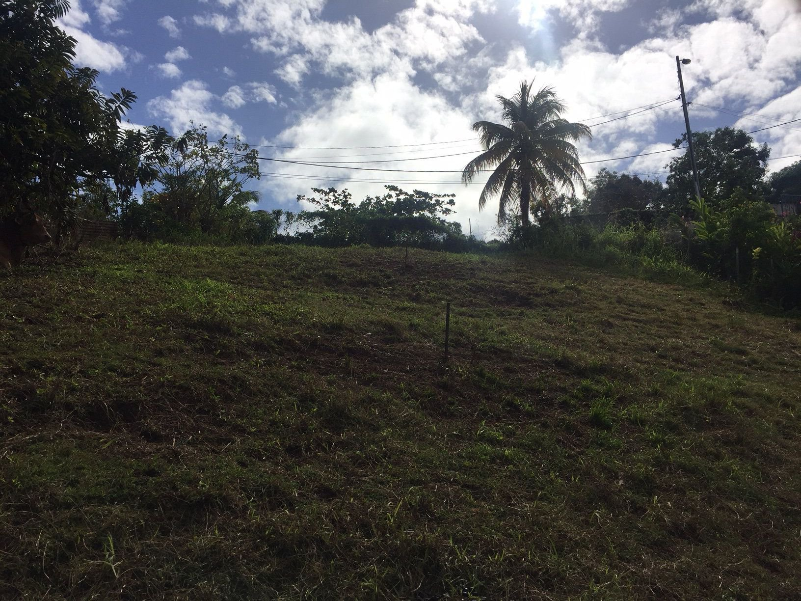 Sale Building land - Le Robert - Martinique
