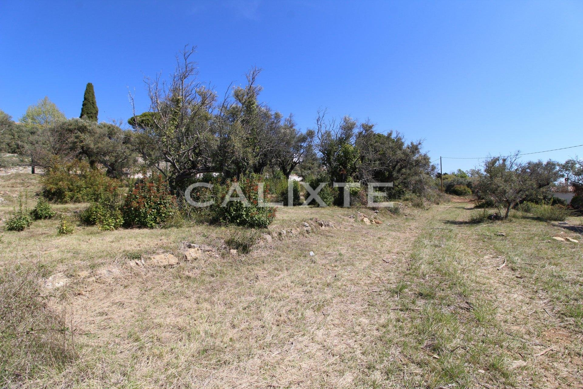 Sale Building land - Callian