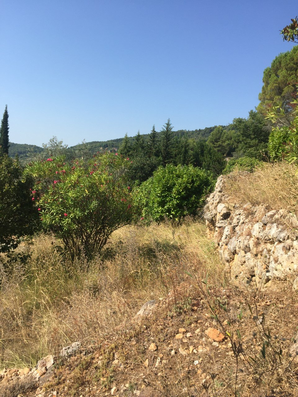Sale Building land - Seillans